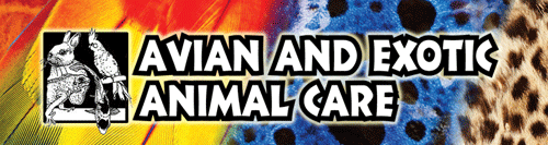 Avian Exotic Animal Care